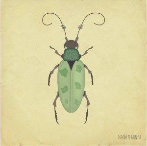beetle_4