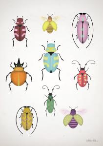 samling av skalbaggar_2